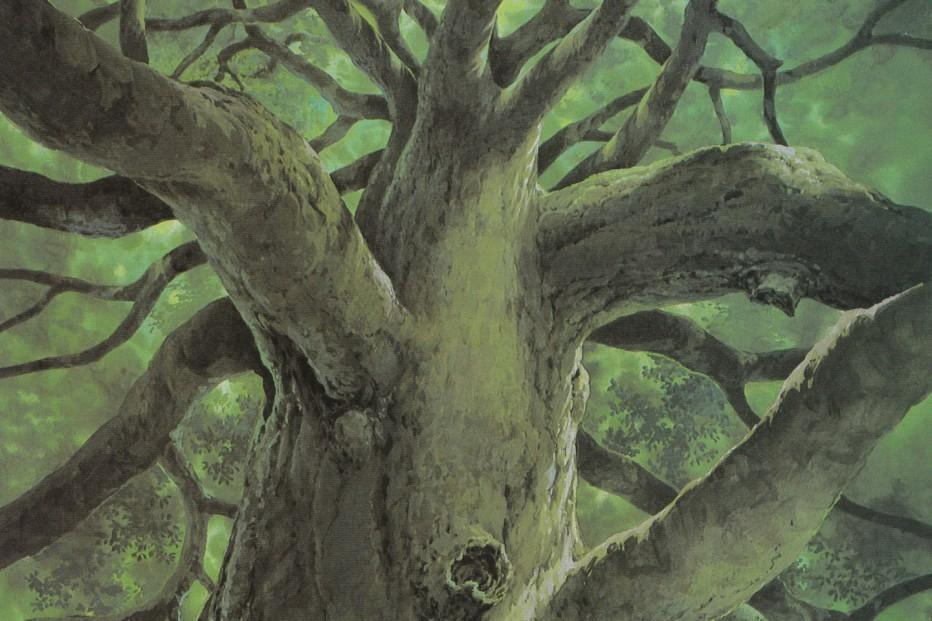 totoro-hayao-miyazaki-05-04.jpg