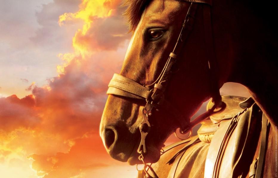 war-horse-2011-steven-spielberg-02.jpg