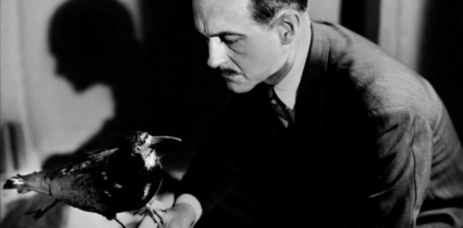 Risultati immagini per il corvo film 1943