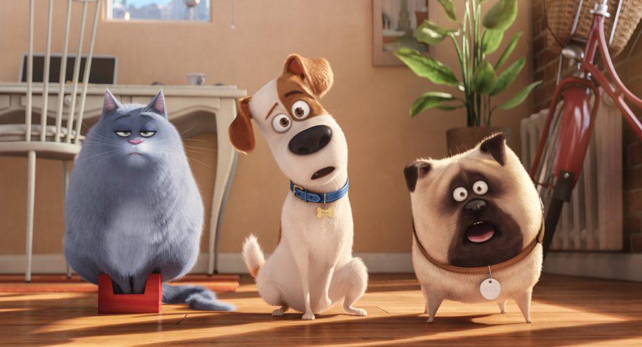 Pets-Vita-da-animali-2016-The-Secret-Life-of-Pets-10.jpg