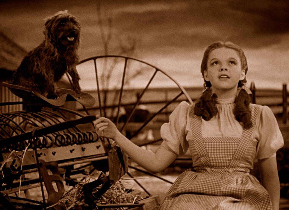 Il-mago-di-Oz-1939-Victor-Fleming-12.jpg