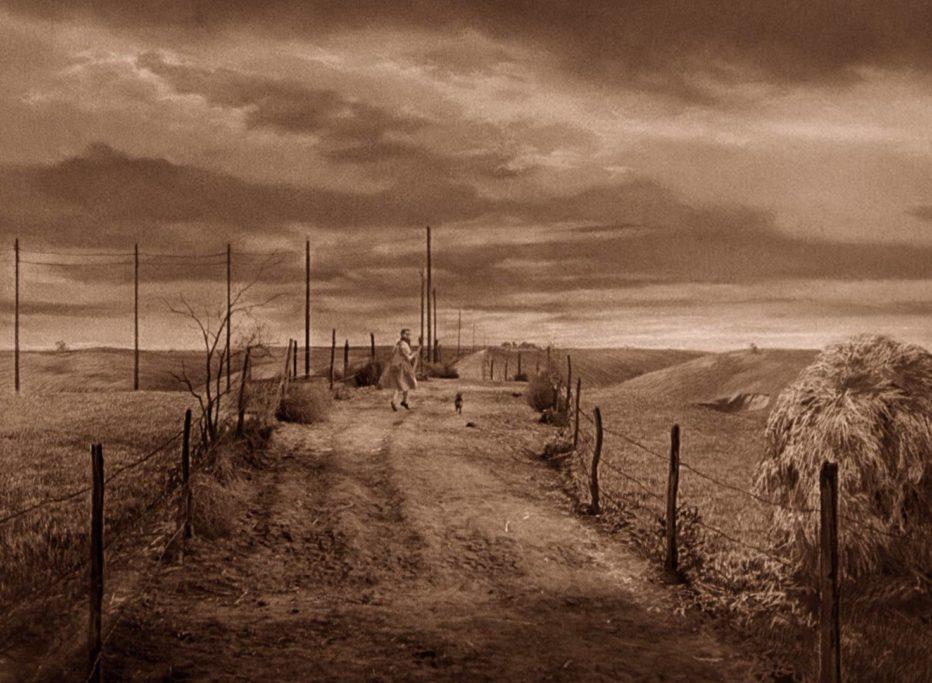 Il-mago-di-Oz-1939-Victor-Fleming-14.jpg