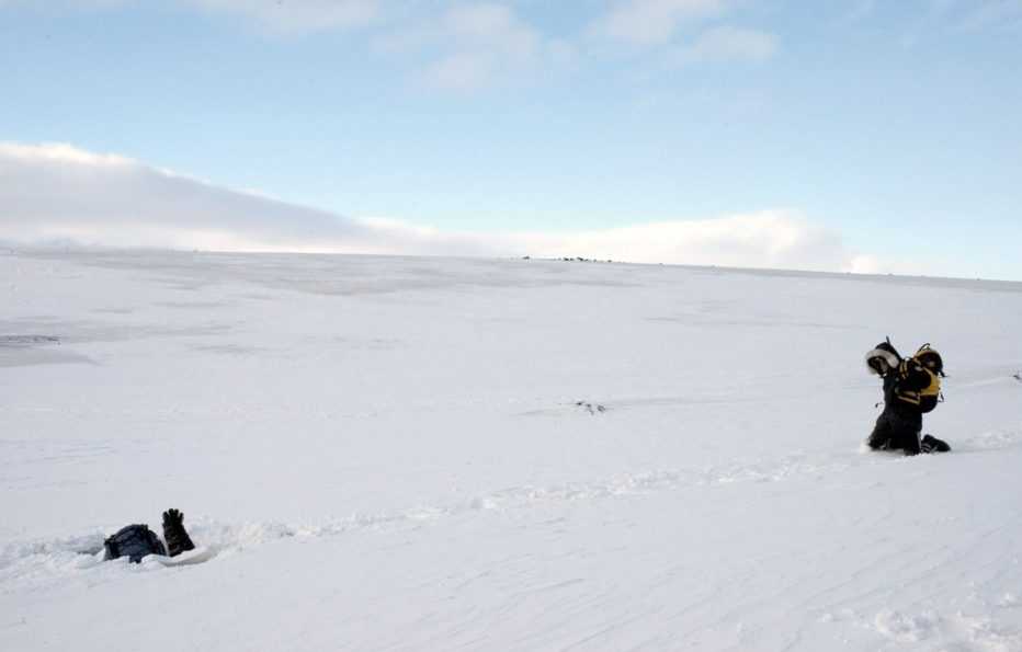 The-Last-Winter-2006-Larry-Fessenden-03.jpg
