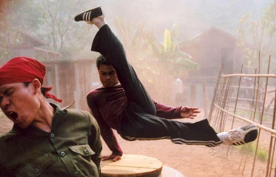 Born-to-Fight-2004-Panna-Ritthikrai-01.jpg