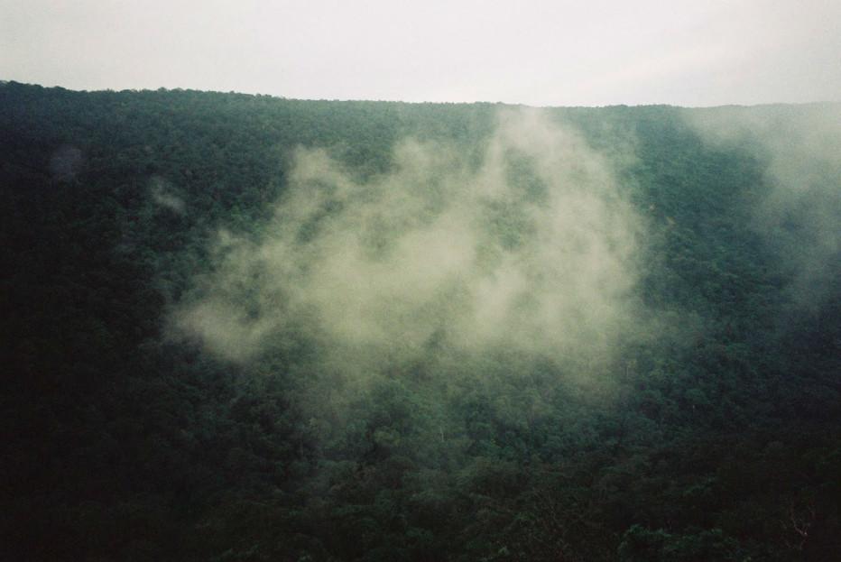 tropical-malady-apichatpong-weerasethakul-02.jpg