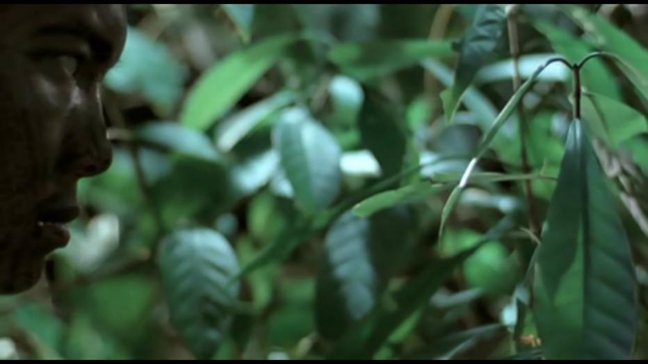 tropical-malady-apichatpong-weerasethakul-03.jpg