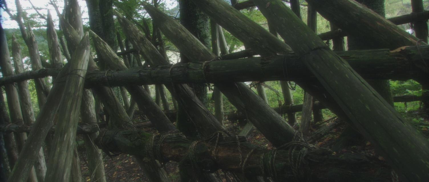 Nipponico sesso in Jungle
