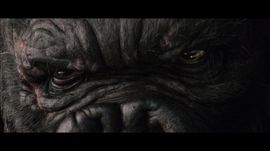king-kong-2005-peter-jackson-36.jpg