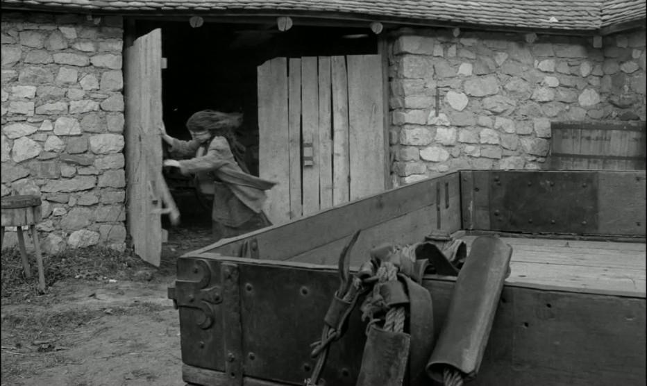 il-cavallo-di-torino-2011-bela-tarr-agnes-hranitzky-16.jpg