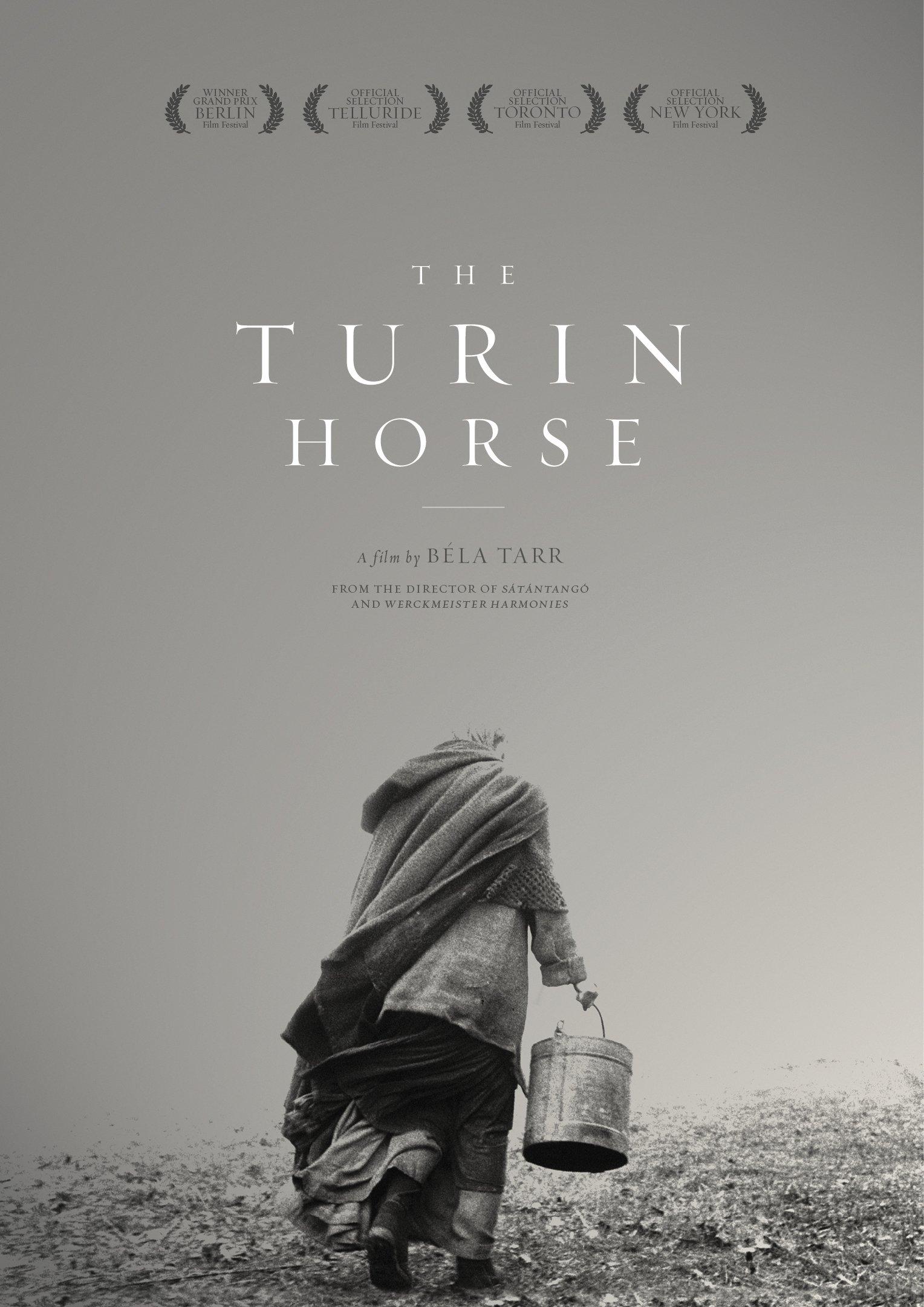 Il cavallo di Torino