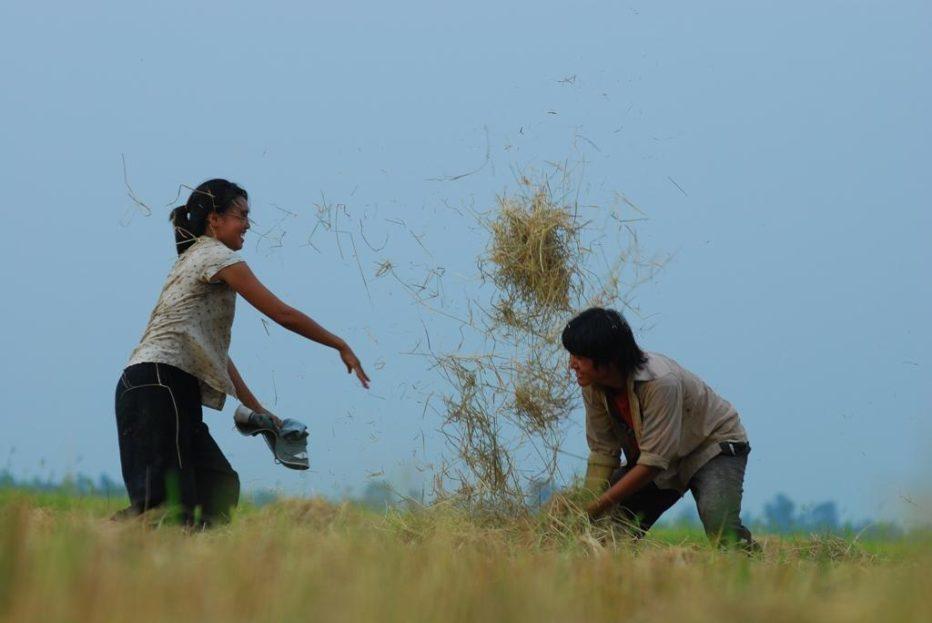 Floating-Lives-2010-Phan-Quang-Binh-Nguyen-03.jpg
