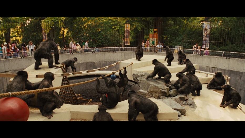l-alba-del-pianeta-delle-scimmie-2011-rupert-wyatt-17.jpg