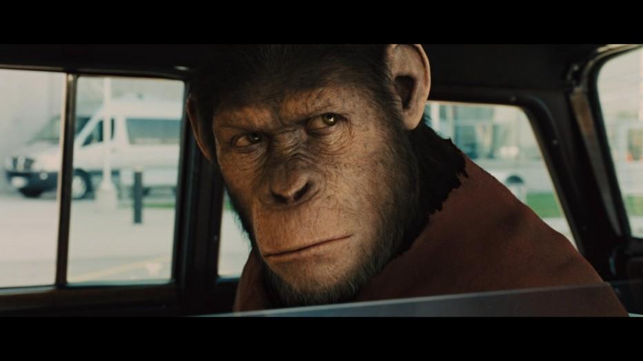 l-alba-del-pianeta-delle-scimmie-2011-rupert-wyatt-20.jpg