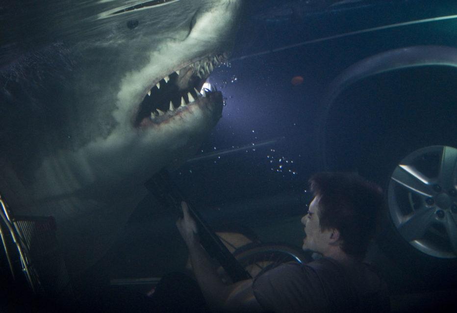 Shark-3D-2012-Bait-Kimble-Rendall-01.jpg