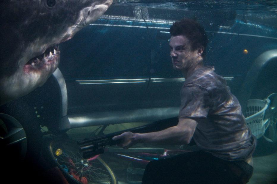 Shark-3D-2012-Bait-Kimble-Rendall-02.jpg