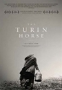 home-video-2013-il-cavallo-di-torino