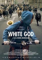 White God – Sinfonia per Hagen