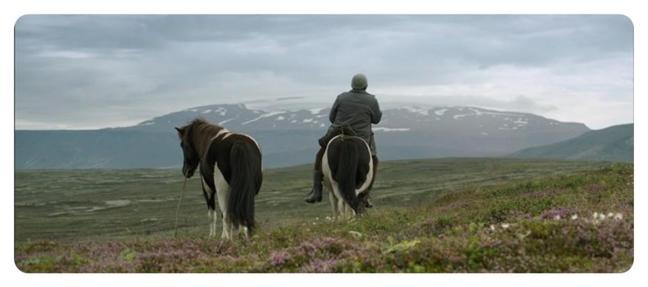 storie-di-cavalli-e-di-uomini-2013-Benedikt-Erlingsson-013.jpg