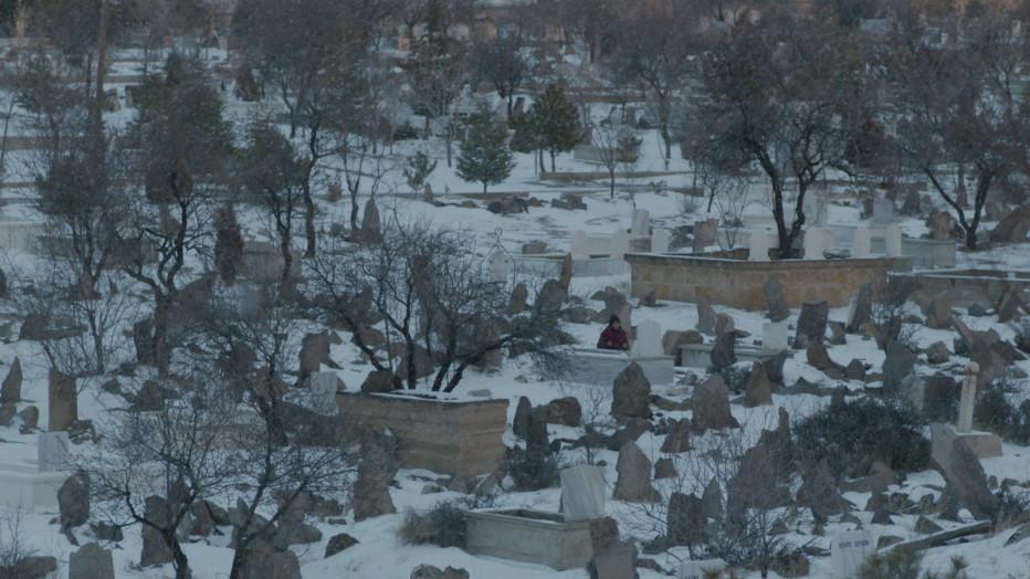 Motherland-Ana-yurdu-2015-Senem-Tuzen-SIC-30-05.jpg