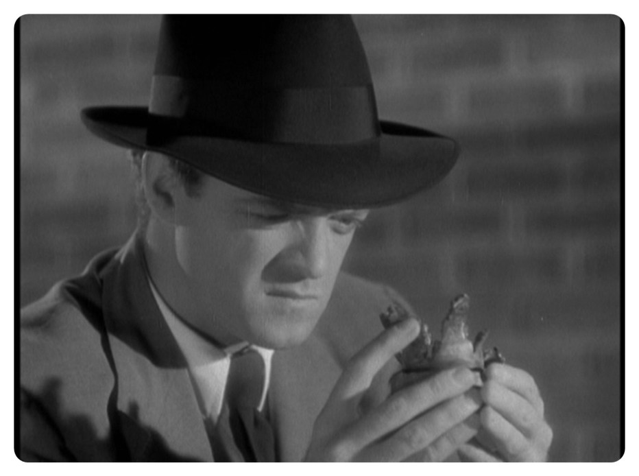 delitto-al-microscopio-1942-Fred-Zinnemann-006.jpg