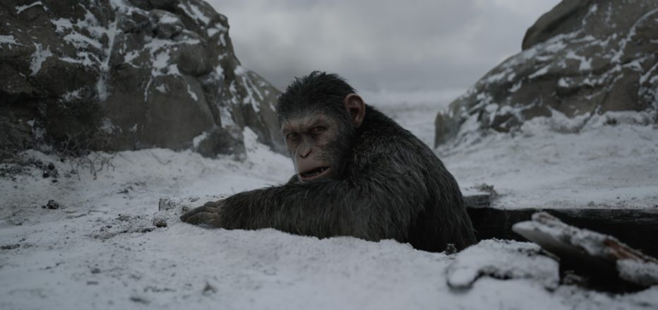 The-War-Il-pianeta-delle-scimmie-2017-Matt-Reeves-01.jpg