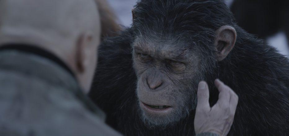 The-War-Il-pianeta-delle-scimmie-2017-Matt-Reeves-09.jpg