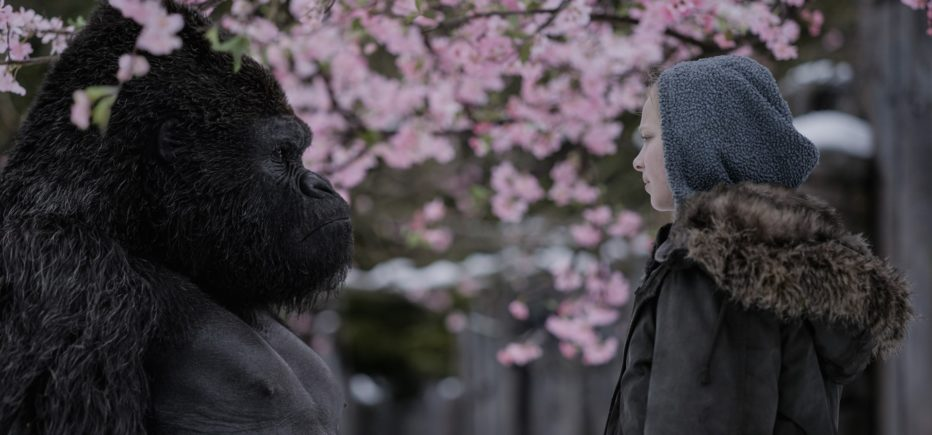 The-War-Il-pianeta-delle-scimmie-2017-Matt-Reeves-13.jpg