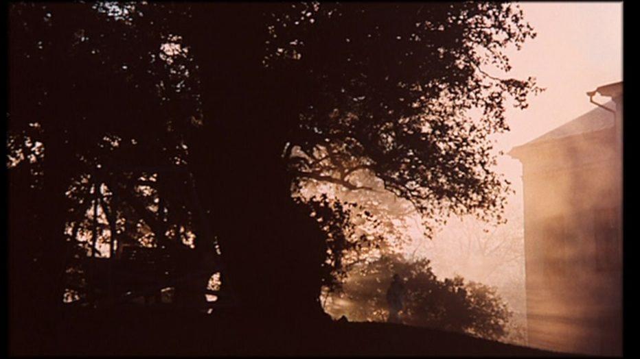 sussurri-e-grida-1972-Ingmar-Bergman-002.jpg
