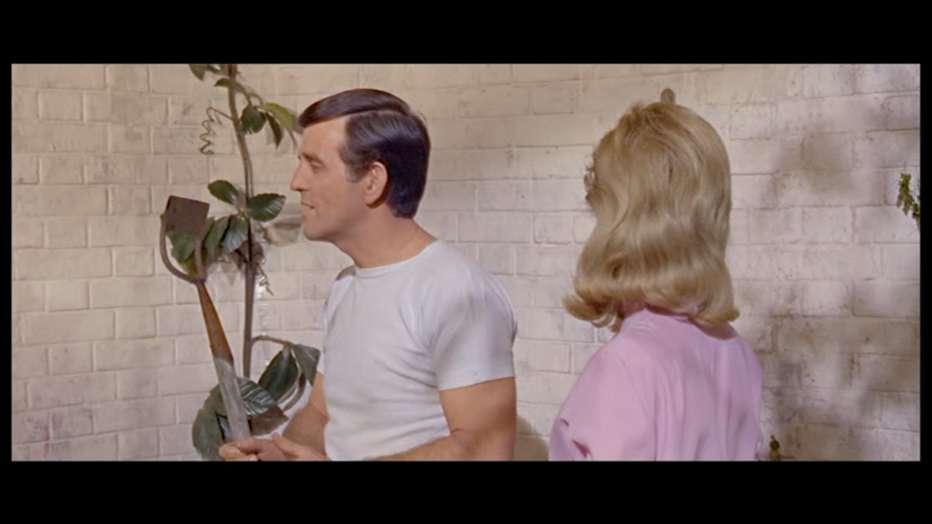 Le-cinque-chiavi-del-terrore-1964-Freddie-Francis-005.jpg