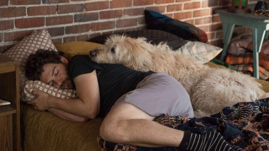 Dog-Days-2018-Ken-Marino-003.jpg