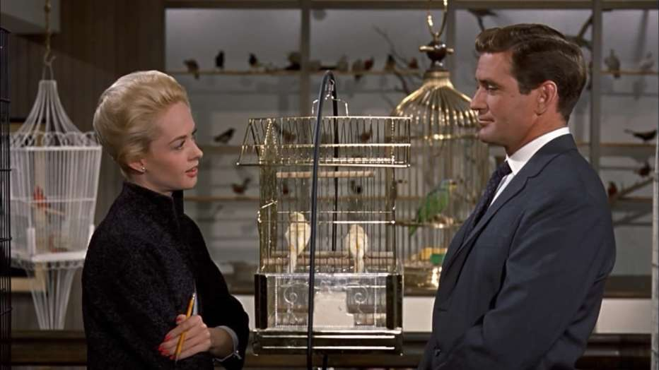 gli-uccelli-1963-the-birds-alfred-hitchcock-recensione-03.jpg