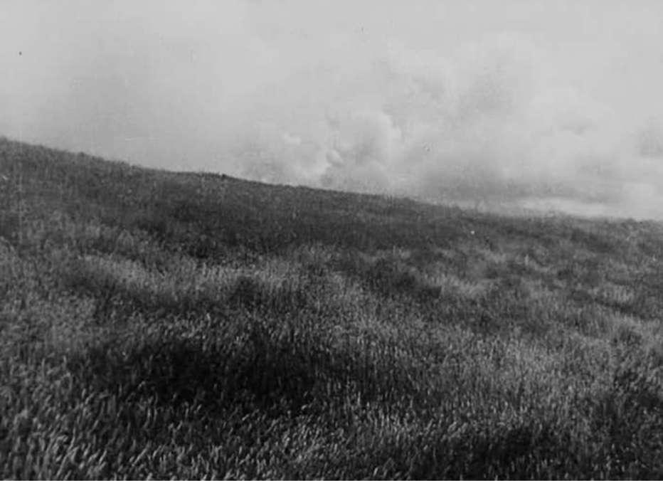 la-terra-1930-zemlja-earth-aleksandr-dovzenko-05.jpg