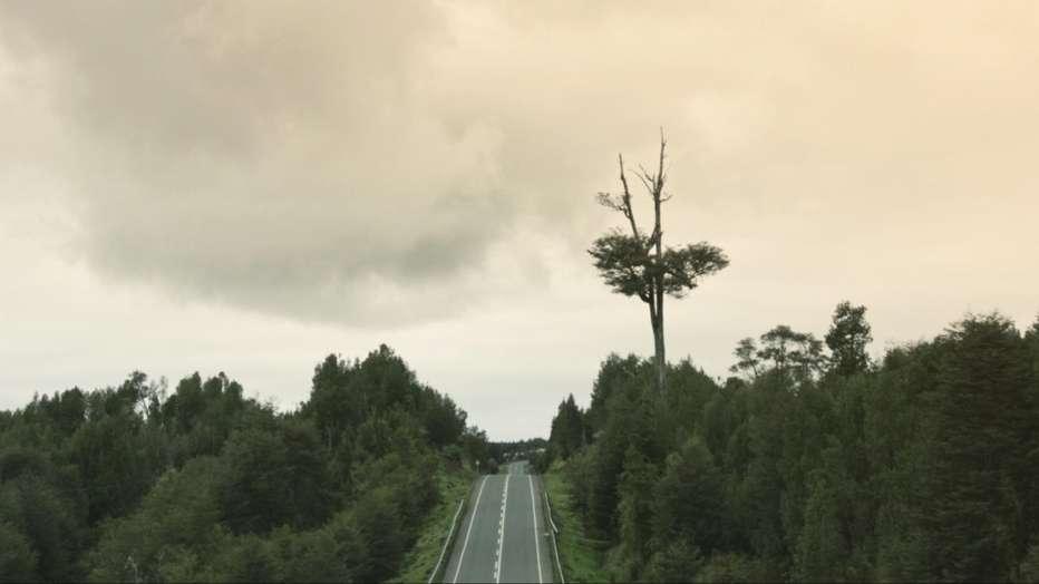 historia-de-mi-nombre-2019-karin-cuyul-recensione-02.jpg