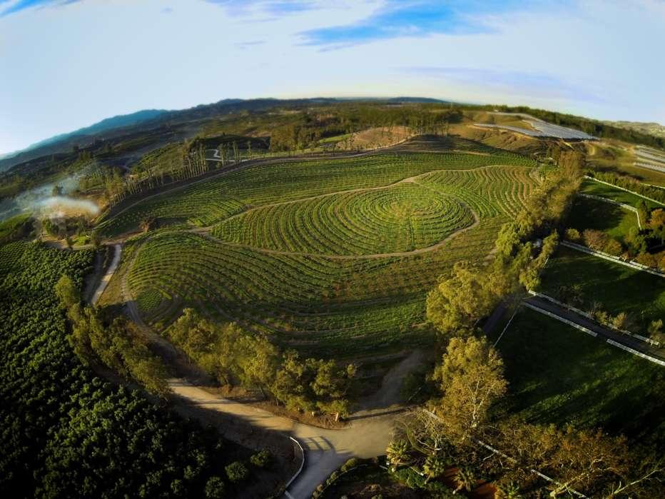 La-fattoria-dei-nostri-sogni-2019-John-Chester-002.jpg