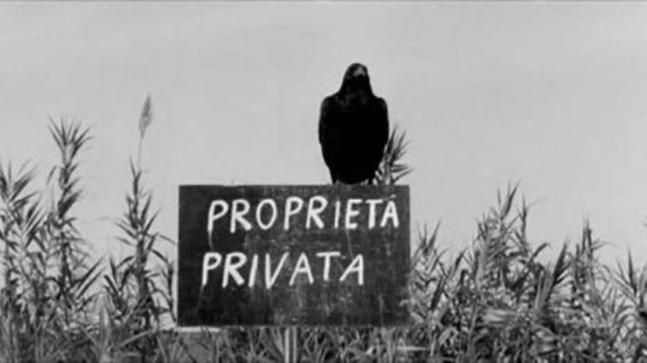 uccellacci-e-uccellini-1966-pier-paolo-pasolini-05.jpg