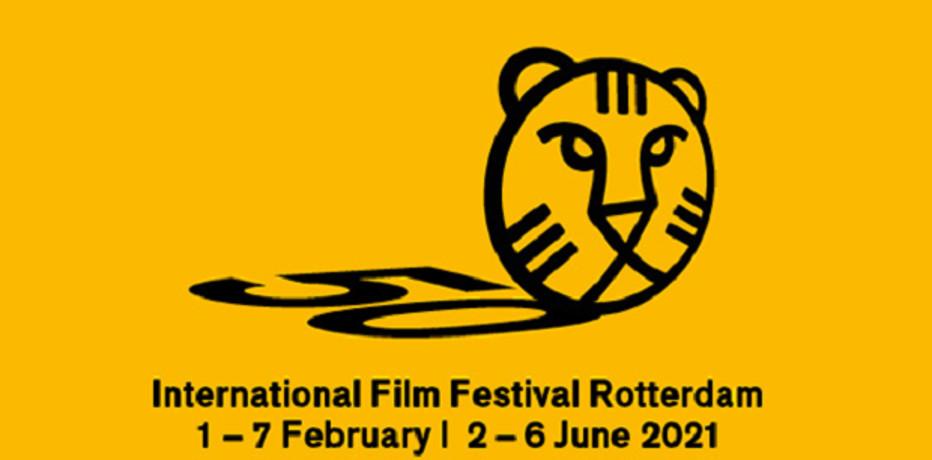 International Film Festival Rotterdam 2021 - seconda parte